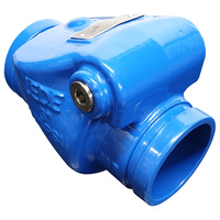 80mm Grooved Swing Check Valve